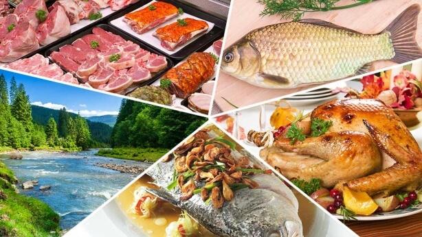 اللحوم ومصادر المياه والنباتات الطبية التي يعدها الله للبشرية