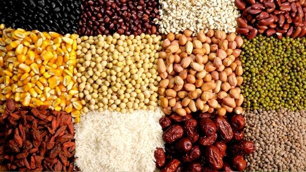 كل أنواع الأطعمة النباتية التي يعدها الله للبشرية