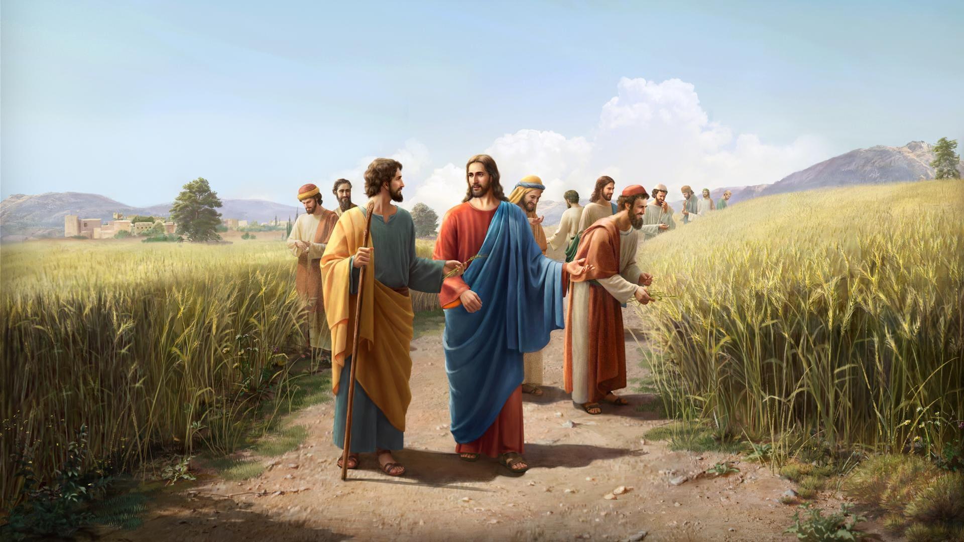 فَإِنَّ ابْنَ الإِنْسَانِ هُوَ رَبُّ السَّبْتِ أَيْضًا