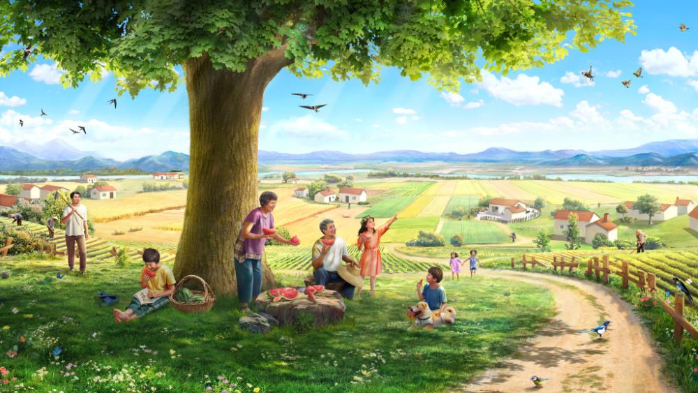 القصة: بذرة، والأرض، وشجرة، وضوء الشمس، والطيور المغردة، والإنسان